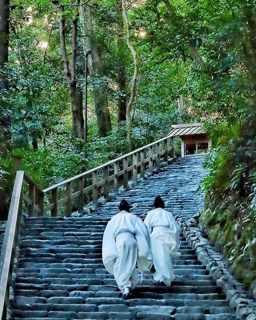 """⛩伊勢神宮 Ise Jingu, Japan🇯🇵 on Instagram: """"⛩ 伊勢神宮 外宮 Ise Jingu Geku Shrine, Mie,Japan  Ise Jingu consists of 125 jinja(Shinto shrines), centered around Naiku and Geku. In land area,…"""" (820062)"""