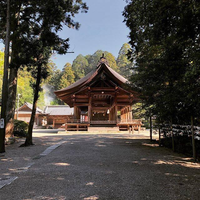 """トリプレッタ 篠田直希 on Instagram: """"◎月例参拝 少し遅れましたが氏神さまへの参拝に来ました。 相変わらずキレイな空気で心がスッキリします! TRIPLETTA(トリプレッタ) TEL 052-757-5573 Mail n.shinoda@cocorozashi-suit.net…"""" (820088)"""