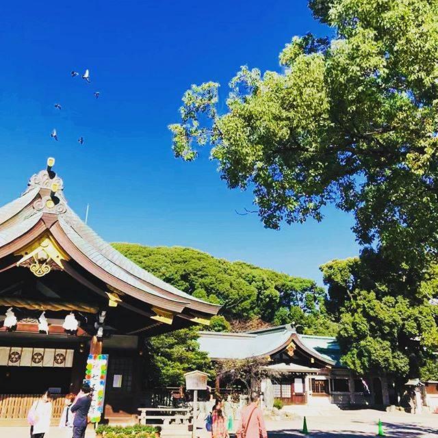 """Hiroaki  Muramatsu on Instagram: """"御朱印大好きおじさんは11月4日愛知県一宮市にある真清田神社へ⛩七五三で訪れている方も多く、賑やかでした♡ #御朱印好き #愛知 #一宮 #真清田神社"""" (822369)"""