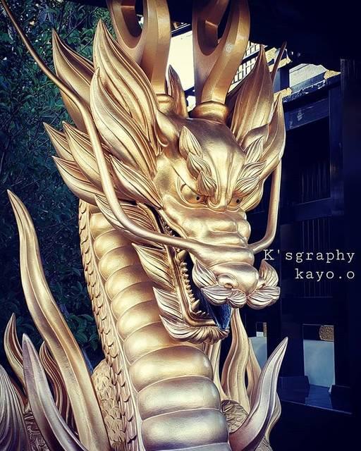 "Kayo*o*Oshima on Instagram: ""金色の龍✨#ksgraphy #金色 #龍王神社#驚きのキンキラキン神社#御利益ありそう #龍 #八代"" (823820)"