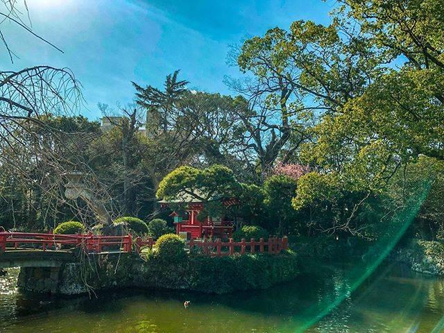 "mi on Instagram: ""#旅行 #日本 #静岡 #三島 #三嶋大社 #日本の風景 #和の風景 #神社 #travel  #japan #shizuoka #여행 #일본 #시즈오카"" (823916)"