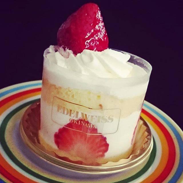 """喜舎場雪枝 on Instagram: """"まよ〜。ありがとう。#ショートケーキ#苺#エーデルワイス沖縄 #おやつ#生クリーム#スイーツ"""" (824966)"""