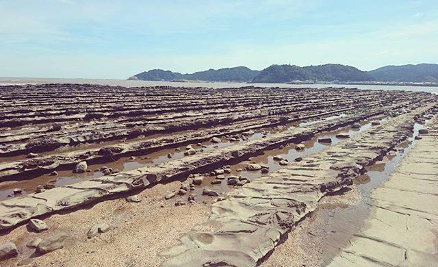 """Maya Morihara on Instagram: """"鬼の洗濯板という、不思議な地形。#miyazaki #宮崎 #aoshima #青島 #鬼の洗濯板"""" (825407)"""