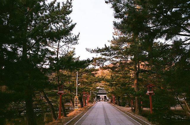 "GongZo on Instagram: ""鳥居をくぐりました。 . . #吉備津彦神社 #備前一宮 #吉備国 #朝日の宮 #岡山 #参拝 #earlymorning #朝日 #filmphotography #filmphoto #filmisnotdead #filmlife #35mmfilm…"" (828975)"