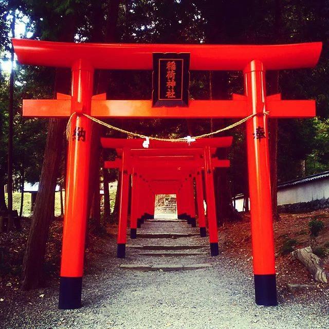 """鈴木ナオ on Instagram: """"吉備津彦神社までサイクリング♪ヽ(*´▽)ノ♪#吉備津彦神社 #サイクリング #岡山"""" (828976)"""