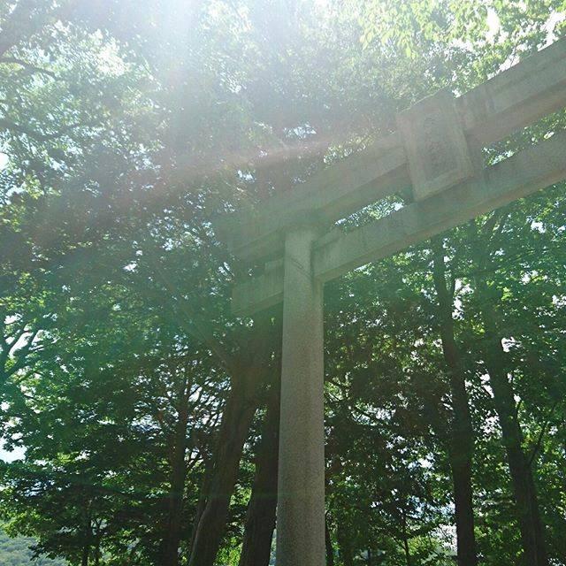 """水乃 on Instagram: """"#赤城神社"""" (834117)"""