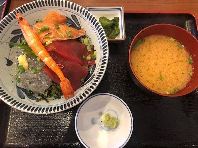 """ひとり旅 on Instagram: """"海鮮丼#鎌倉ランチ #鎌倉海鮮丼 #生しらす丼 #小町通りランチ #神奈川海鮮丼"""" (845399)"""
