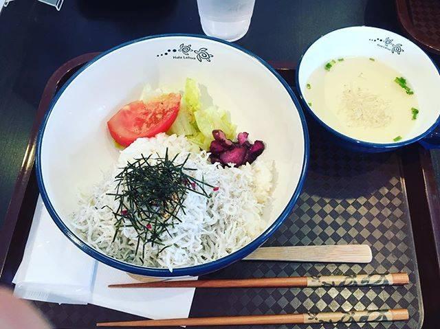 """ゆあやか on Instagram: """"お腹減りすぎて茹でシラス丼にした( ´•_•` )生しらすが恋しい😔😔⚡️#鎌倉シラス丼"""" (845419)"""