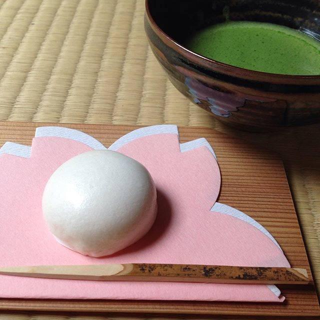 "Michiko on Instagram: ""お土産にいただいたお菓子で一服🍵 #荒城の月#但馬屋老舗 #竹田市 #大分県#高取焼#鬼丸雪山碧山窯 #和菓子#茶道#茶の湯#wagashi #sweet #sweets #sadou #cyanoyu #matcha #tea #teaceremony #japan…"" (849242)"