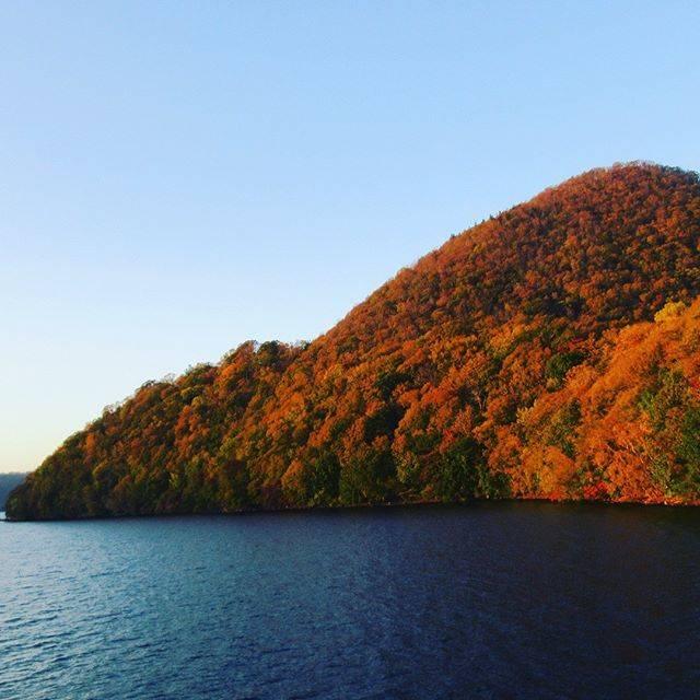 """Japan Traveler Naoto on Instagram: """"本日の紅葉情報です🍁  洞爺湖は例年10月中旬〜11月上旬と、長く紅葉を楽しめることで知られています♪  湖のまわりの木々の燃えるような紅葉を、遊覧船に乗ってゆったり観賞することができますので、…"""" (852530)"""