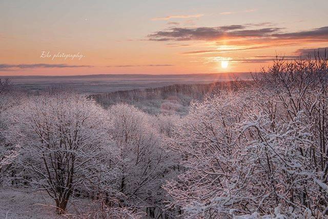 """〜𝐸𝐼𝒦𝒪〜 on Instagram: """". . 今朝は昨日から降り続いた雪と 湿気が寒さでコーティングした霧氷に❄️ . もやもや〜と霧も流れて 綺麗な朝日が輝きました✨ . . サンピラーまでも🧡 . . . この後、鶴居へ🕊✨ . . . 3/24の柔らかな朝日。日の出が早いっ! やっぱり、春だな〜🧡 . .…"""" (853246)"""
