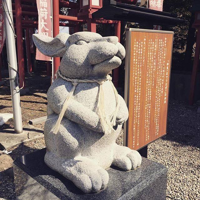 "Maru on Instagram: ""聽說來這一定要一邊許願一邊撫摸兔兔#湯倉神社#神兔#拍攝 日本 北海道#Japan Hokkaido 🇯🇵"" (867452)"