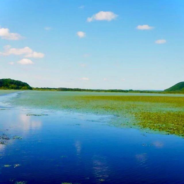 """@kazh_nishinari on Instagram: """"外出自粛ですが、自分はインドアでいくらでもやることがあるのであまり生活に影響はありません(´∀`)笑 驚いたのはテレビ番組が軒並み総集編になってたこと。 更に野ブタをプロデュース。がやっていたことw  location 釧路湿原  #北海道 #北海道旅行 #釧路湿原 #道東…"""" (869589)"""