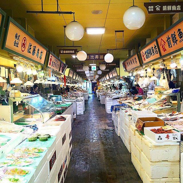 "Sneakers & GOLD on Instagram: ""#コロナで気が滅入るからみんなの写真で旅行しようぜ #iwanttogooutside #japan #日本 #北海道 #hokkaido #fishmarket #魚市場 #roundtheworldtrip #世界一周 #世界一周旅行…"" (872119)"