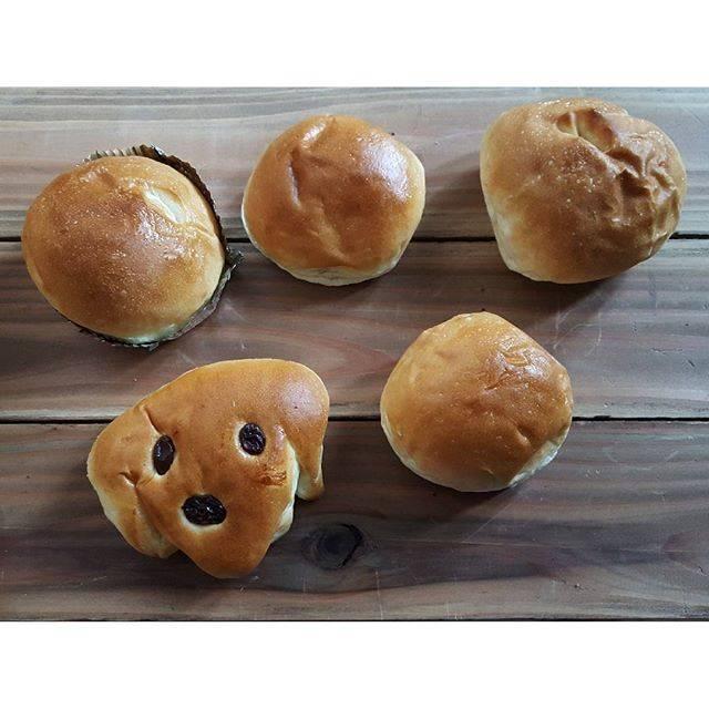 """makino on Instagram: """"帰宅後の朝食は  友永パン屋 さんのパン  あんぱんは勿論  他のパンも絶品でした✨  子ども達は、寝起きで2個ずつ完食  その勢いが美味しさを物語ってました  もっと買って帰ればよかった…  #大分#別府#あんぱん#粒あん #こしあん #クリームパン#友永パン屋…"""" (873358)"""
