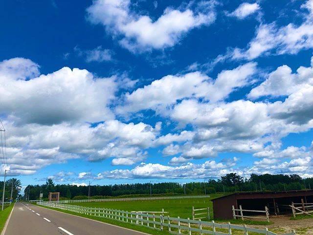 """くじら@雲と空が大好きな大学生/🇵🇪 on Instagram: """"どこまでも自由に浮かんでいる雲みたいに私も色んなものから解放されたいその先にどんな世界が広がってるのか楽しみしかない*#空が好きな人と繋がりたい #雲が好きな人と繋がりたい #写真好きな人と繋がりたい #雲 #空 #北海道"""" (874054)"""
