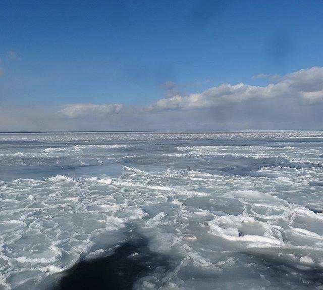 """北海道自然散策のススメ on Instagram: """"とある年の温根沼周辺の流氷 #流氷# ice#オホーツク海#sea#温根沼#根室#道東#北海道 #ほっかいどう#北海道から #北海道カメラ部 #北海道旅行 #北海道観光 #北海道大好き #北海道の旅 #北海道行きたい #自然#自然観察 #自然いっぱい #自然が好き…"""" (874393)"""