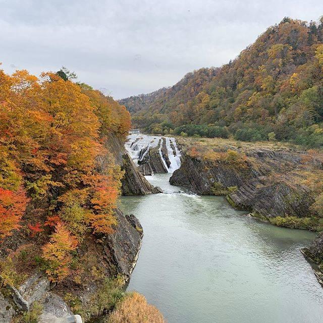 "i am i on Instagram: ""#滝の上公園"" (874572)"