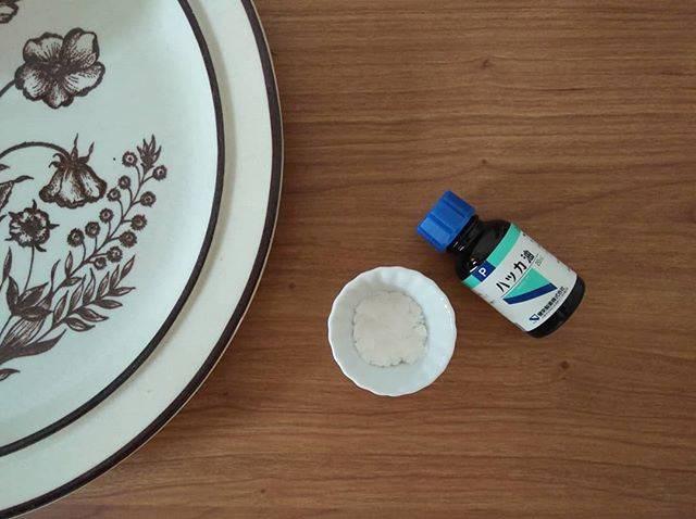 """chiho on Instagram: """"暑くなってきてむすめたちも所々蚊に刺されることが増えてきました。 ・ 殺虫剤入りの虫除けは効きがいいけれど鼻がツンとする刺激臭が苦手。 身につける虫除けだけでなく部屋に置く虫除けもアロマにしました。 ・ 陶器の器に重曹を少し入れて、そこにハッカ油を数滴。 ・…"""" (874691)"""