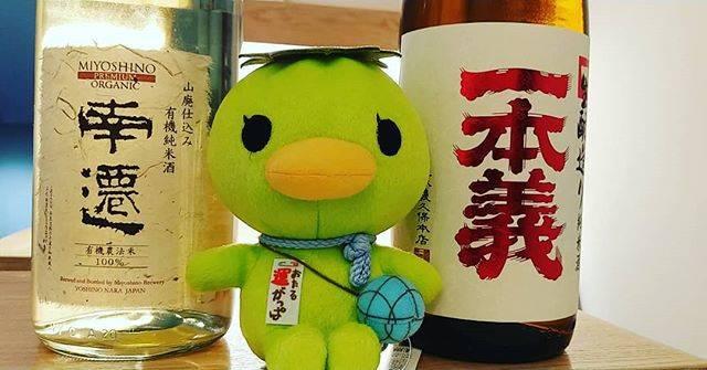 """純米酒専門八咫 札幌店(日本酒 スタンディングバー) on Instagram: """"【はい、ポーズ】  #奈良県 #美吉野醸造株式会社 #なんせん  #福井県 #一本義久保本店 #一本義 #生もと純米  店長にとって、運がっぱは幸運のゆるキャラなので、少しでもご覧下さっている皆様に幸運が訪れれば良いなぁと、思っております。…"""" (874812)"""