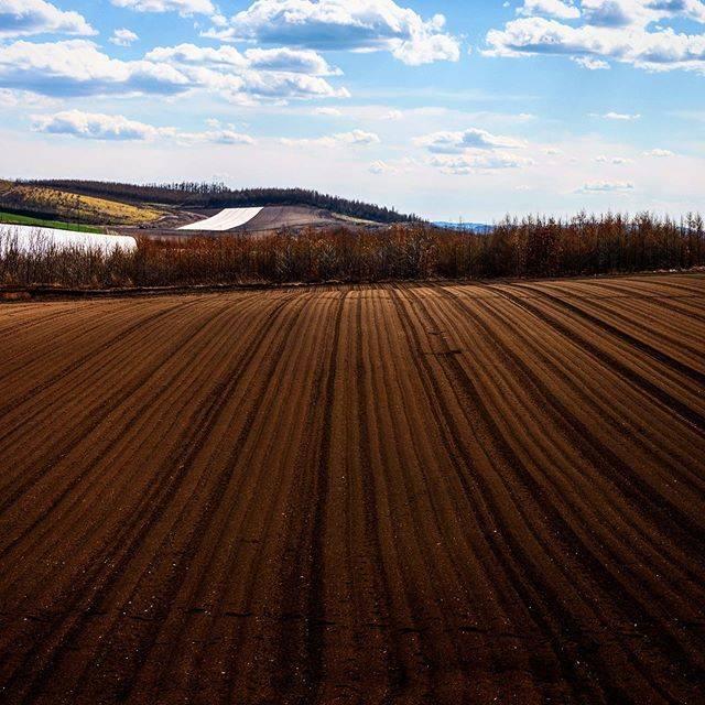 """ち~パパ on Instagram: """"畑の模様 #北見市 #北海道カメラ部 ⠀ #photos_japan ⠀ #Instagramjapan⠀ #bns_japan⠀ #ritrip_nippon⠀ #名前のない写真部⠀ #nikon⠀ #landscape_lovers⠀ #nature_lovers⠀…"""" (877792)"""