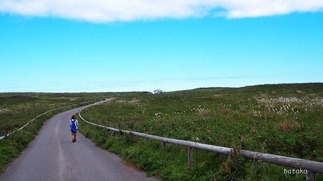 """ばたこ on Instagram: """". 昨日行った#ワッカ原生花園 . 何キロも続くこの景色の中をのんびりお散歩⤴  楽しかった😍 でも2キロぐらいで戻ってきたかな😁 なんせすぐ疲れるから(笑 .…"""" (877799)"""