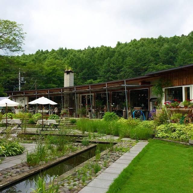 "natsuko on Instagram: ""#photooftheday #instadaily #instanature #instaflower #nature #naturelovers #ミオンエシカルキッチン #千歳"" (880391)"