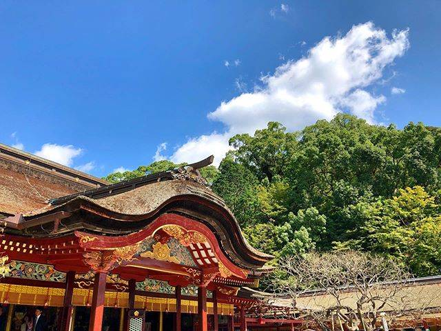 "S.etoo on Instagram: ""早くまた行きたい…  Dazaifu tenmangu shrine...…"" (882931)"