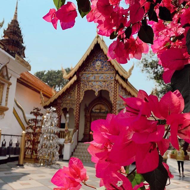 タイ北部の古都「チェンマイ」には美しいお寺がたくさんある。