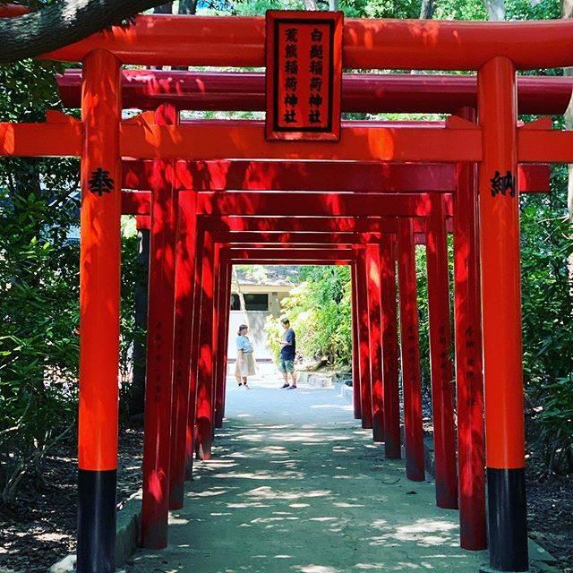"""よっこん on Instagram: """"...年度始めにお祈りしてきた!京都にありそうな雰囲気だけど、場所は福岡笑しかもキャナルの近く!! #月初参り #新年度#福岡 #FUKUOKA #FUK#神社 #"""" (885754)"""