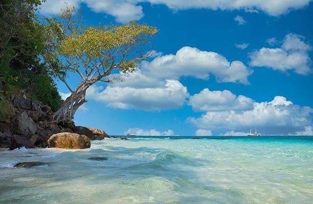 "Beach Bikini on Instagram: ""Bamboo beach Thailandia . . . . . . .  #thailand #travel #island #phiphiisland #bambooisland #krabi #summer #asia #travelphotography…"" (888188)"