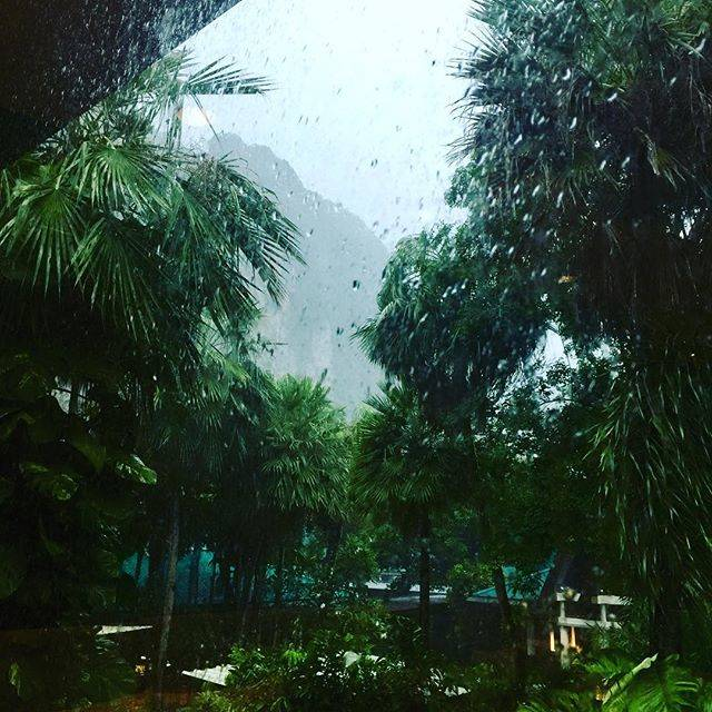 """Cathryn on Instagram: """"For everyone sick of the holiday photos. Enjoy!!!!10 mins after we got off-heavy rains set in for afternoon night. #rainyseasonthailand"""" (888190)"""