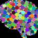 【診断】男脳と女脳の違いと特徴や恋愛傾向とは?脳科学的には嘘? - POUCHS