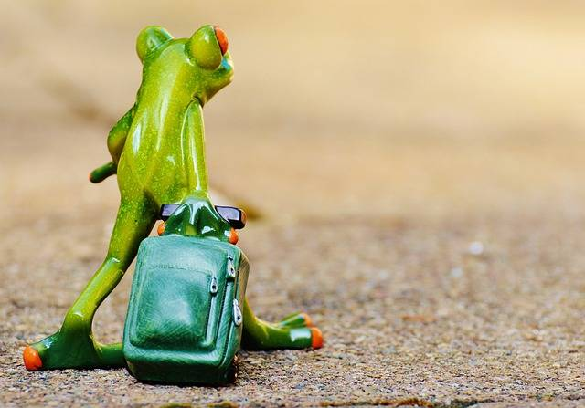 Frog Farewell Travel · Free photo on Pixabay (38925)
