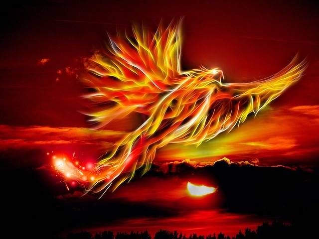 Phoenix Bird Fire · Free image on Pixabay (40773)