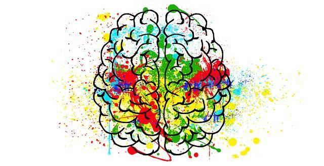 Brain Mind Psychology · Free image on Pixabay (49140)
