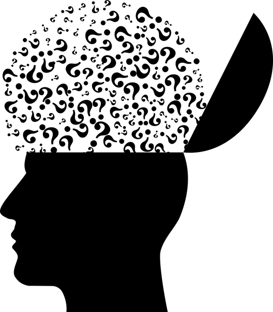 Mental Health Cranium Head · Free vector graphic on Pixabay (54304)