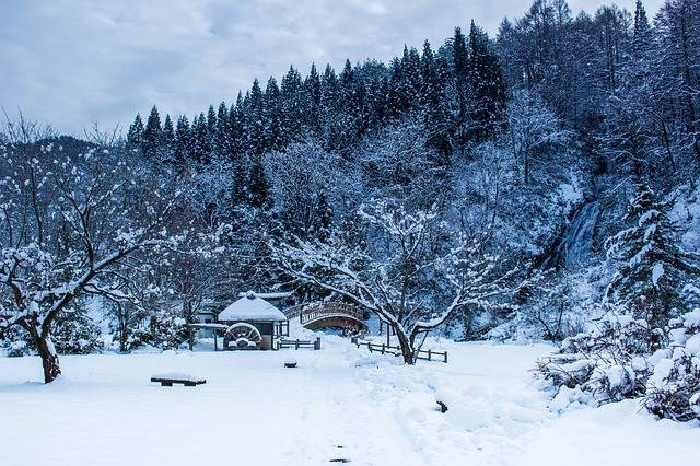 Japan Winter The Four Seasons · Free photo on Pixabay (56410)
