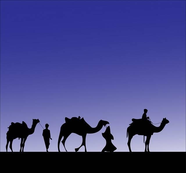 Camel Camels Wise Men Three · Free image on Pixabay (58283)