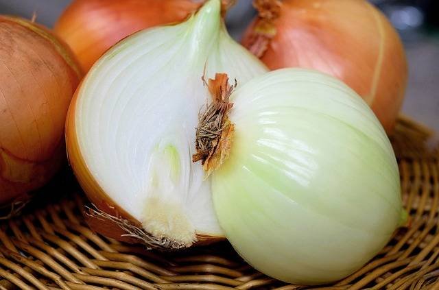 Onion Half Raw · Free photo on Pixabay (58538)