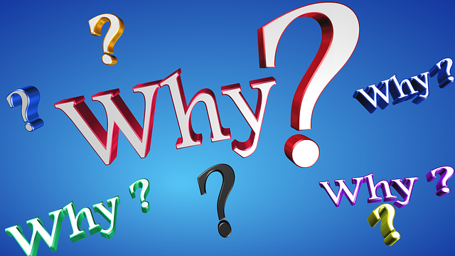 Why Text Question · Free image on Pixabay (63943)