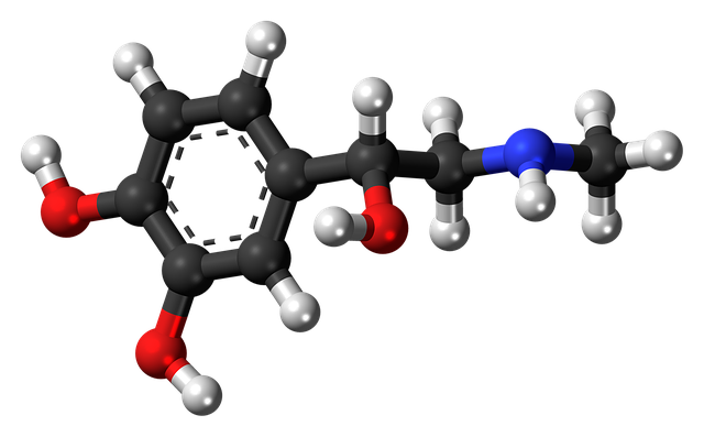 Adrenaline Epinephrine Hormone · Free image on Pixabay (66683)