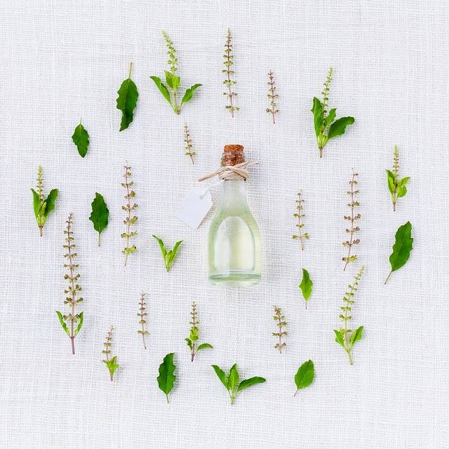 Aroma Basil Spices · Free photo on Pixabay (69411)