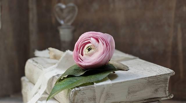 Books Old Romance · Free photo on Pixabay (71789)