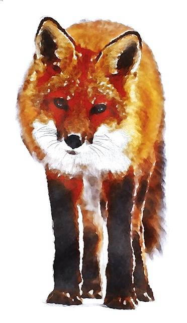 Fox Watercolor Oekaki - Free image on Pixabay (79851)