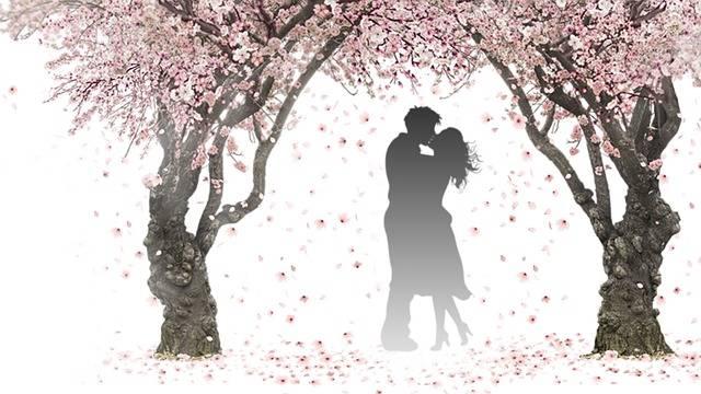 Nature Spring Pink - Free image on Pixabay (87852)
