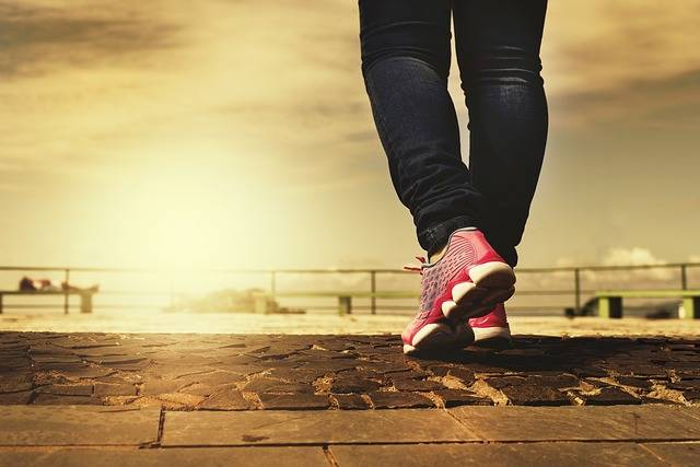 Walk Path Walking - Free photo on Pixabay (94725)