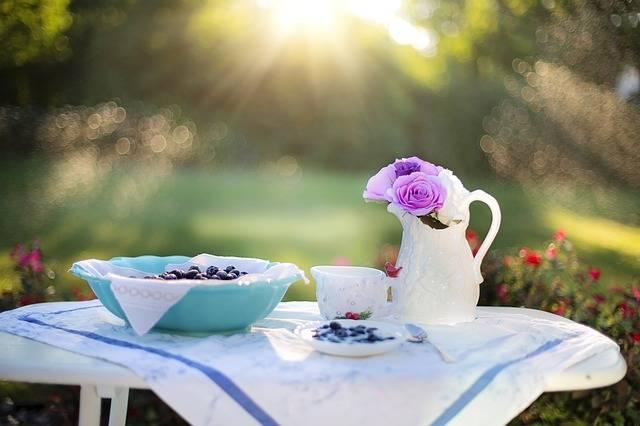 Blueberries Dessert Breakfast - Free photo on Pixabay (99000)