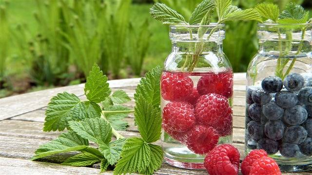 Water Fruits Raspberries - Free photo on Pixabay (99001)