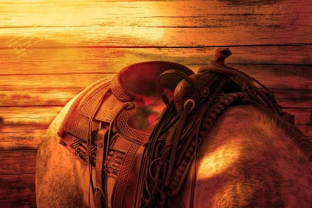 Horse'S Back Ride Horse - Free photo on Pixabay (99004)